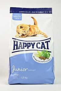 happy cat junior