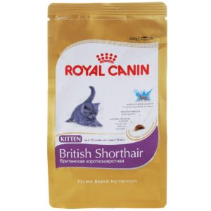роял канин сухой корм для британского котенка