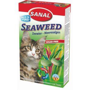 морские водоросли для кошек