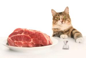 натуральное мясо для кошек