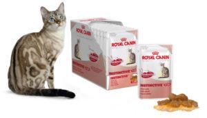 влажный корм для кошек royal canin