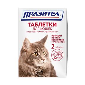 празител для кошек