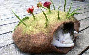 домик земля для кошки
