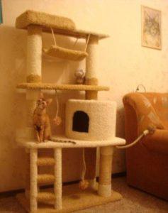 кошка сидит в домике когтеточке