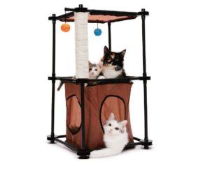 кошки в домике