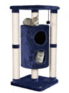 два кота лежат в домике