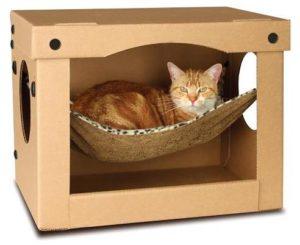рыжий кот лежит в коробке