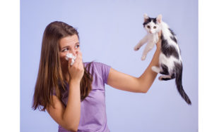 у девушки аллергия на кошек