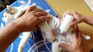 обработка шва после стерилизации