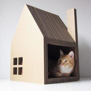 кот лежит в самодельном домике