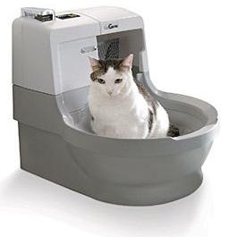самоочищающийся лоток для кошек