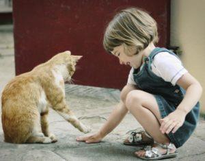 ребенок играет с кошкой
