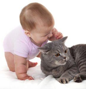 младенец с котом