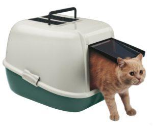 закрытый или биотуалет для кошки