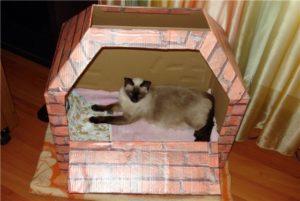 домик из картона для родов кошки