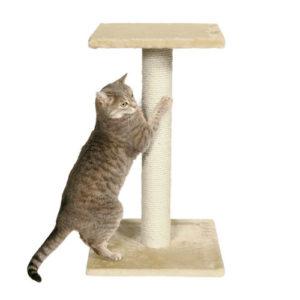 когтеточка столбик для кошек