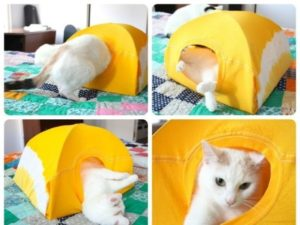 домик из футболки для кошки