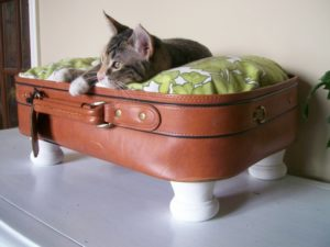лежанка из чемодана