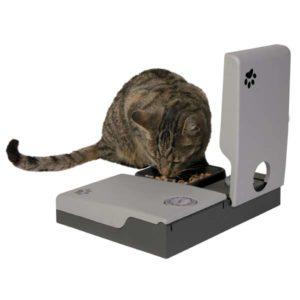 кормушка для кошки