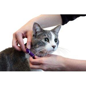успокаивающий ошейник для кошек