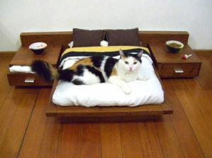 деревянная кровать для кошки