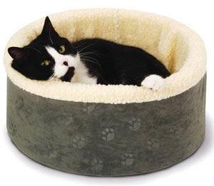 черный кот лежит в лежаке